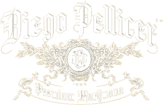 Diego Pellice Worldwide