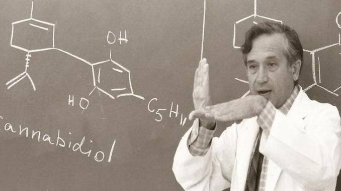 Godfather of Cannabis Research