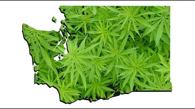 Washington marijuana