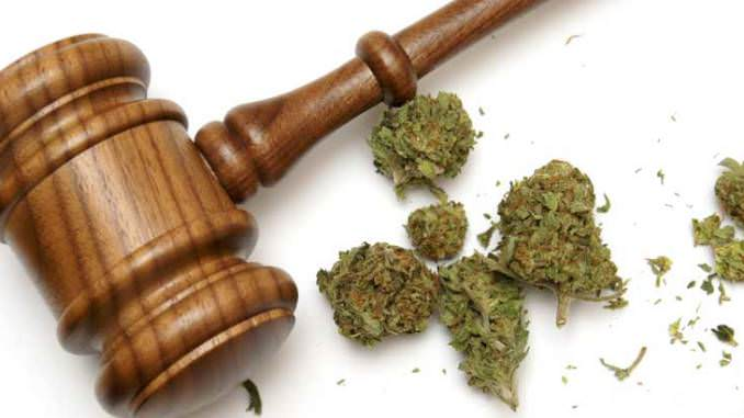RICO,cannabis farm lawsuit,racketeering