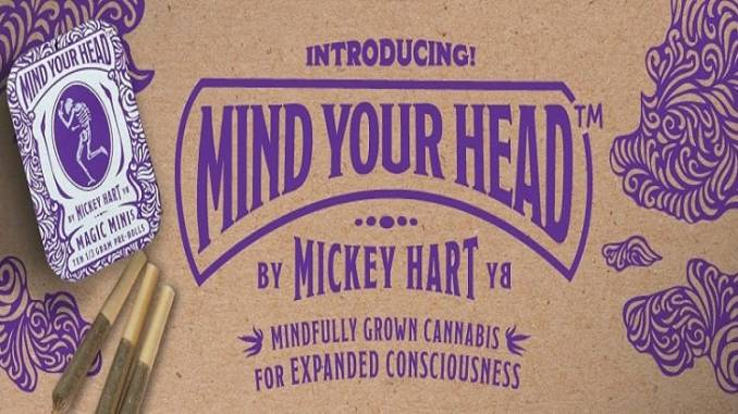 mind your head mickey hart marijuana cannabis grateful dead